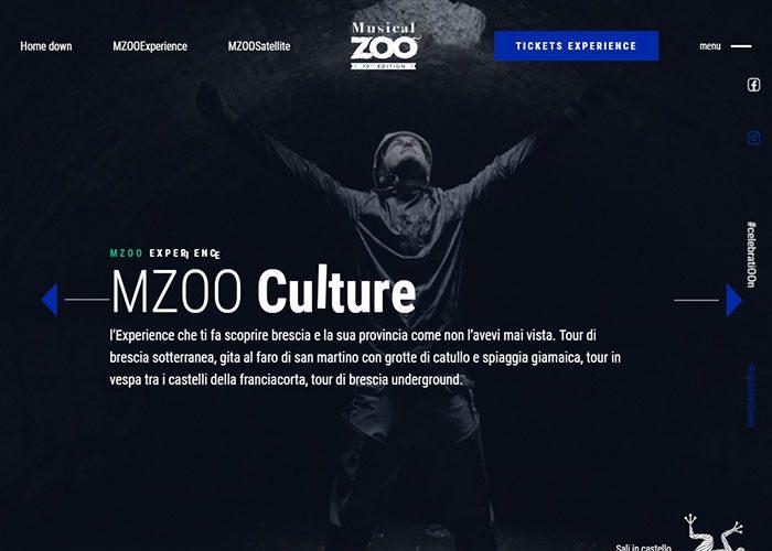 Musical-Zoo-Festival